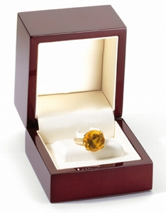 ring clip/bague clip